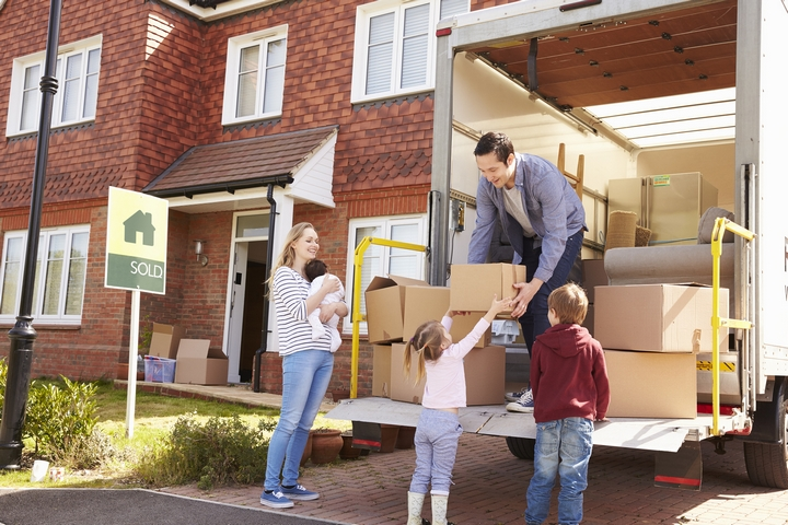 Settling Down: 4 Important Activities After You've Moved