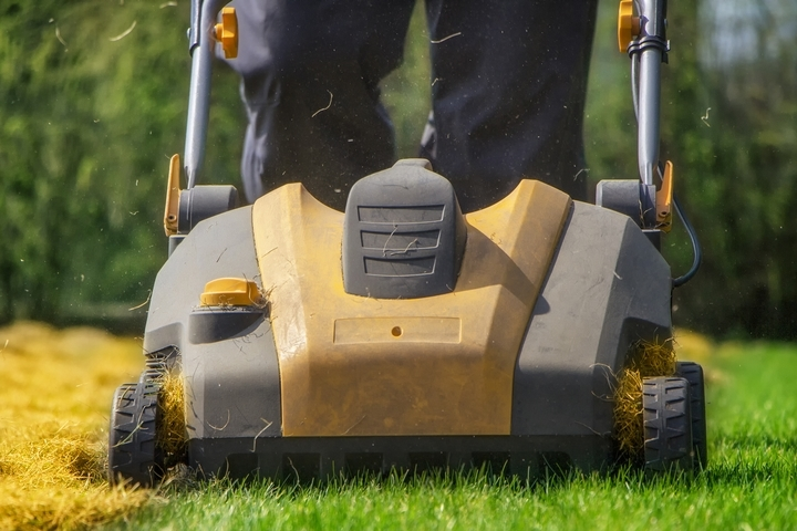7 Spring Lawn Mowing Tips and Tricks